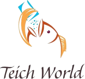 Teich World - Teichbau in Würselen