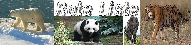 Vom Aussterben Bedrohte Tiere Liste