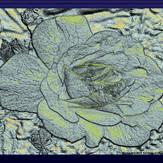Rosenrelief farbig