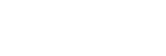 The Tint Academy