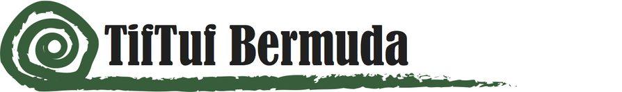 TifTuf Bermuda