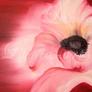Ungewissheit - 100 x 60 cm (verkauft)