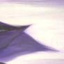 Wind - 150 x 30 cm